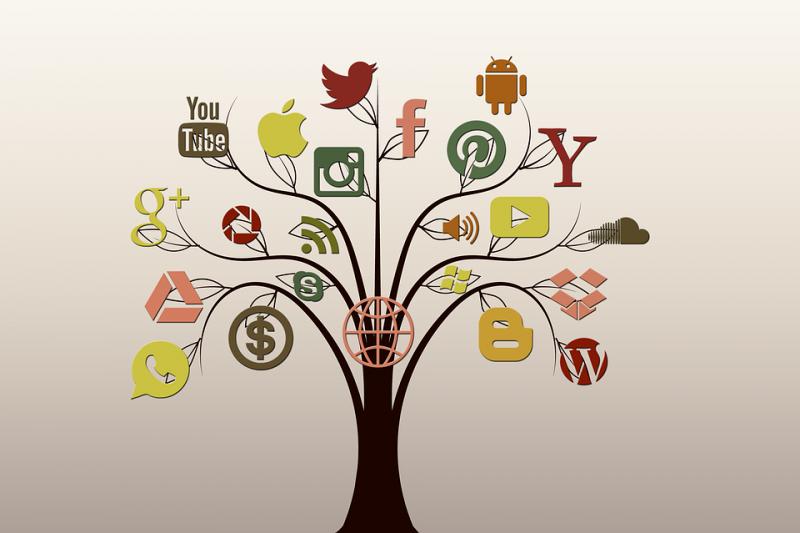Como Utilizar as Redes Sociais Para Divulgar o Seu Negócio