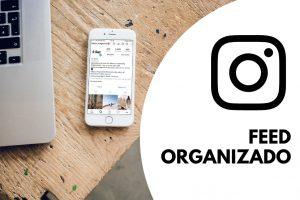 Feed Organizado e Profissional no Instagram