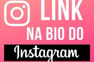 o que significa link na bio no instagram
