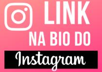 Bio Instagram: Onde Fica o Link da BIO do Instagram?